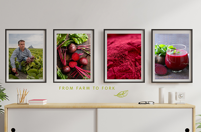 4 photo frames showing the value chain around beetroot