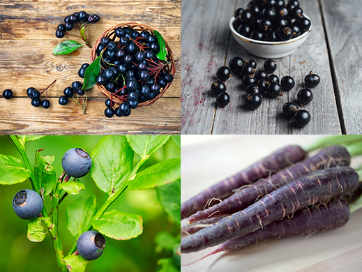 Aronia, Blackcurrant,Bilberry, Purple carrot