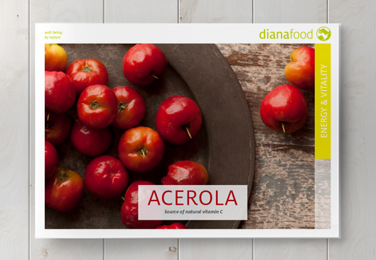 Top view of the Acerola brochure on wooden table