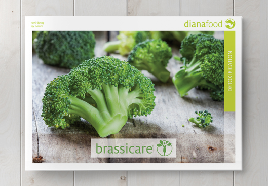 Top view of the Brassicare brochure on wooden table