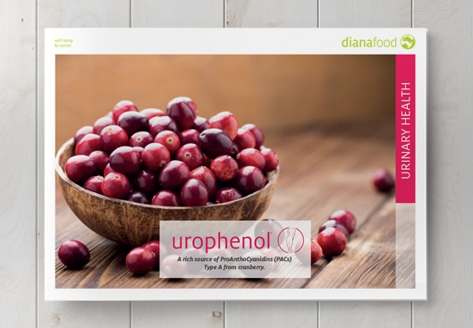 Top view of the Urophenol brochure on wooden table